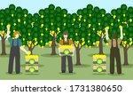 three men picking mango from a... | Shutterstock .eps vector #1731380650
