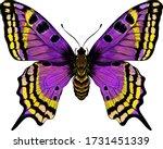 Butterfly Purple Yellow Morph...