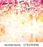 Stock photo cherry blossoms over blurred nature background spring flowers spring background with bokeh 173150948