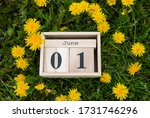 Calendar Organizer June 01  Th...
