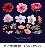 set summer flower watercolor... | Shutterstock . vector #1731759109