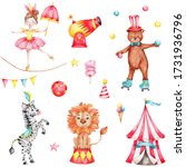 Circus Set With Roller Skate...