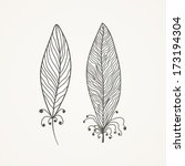 feathers | Shutterstock .eps vector #173194304