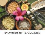 health spa sitting on green leaf | Shutterstock . vector #173202383