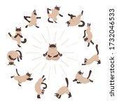 cats yoga. siamese cats.... | Shutterstock .eps vector #1732046533