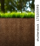 a section of land with grass... | Shutterstock . vector #173205593