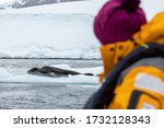 Lemaire Chanel  Antarctica. 01...