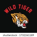 black and white vector sketch... | Shutterstock .eps vector #1732261189