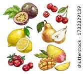 fresh and juicy fruits set 2.... | Shutterstock .eps vector #1732329139