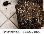 Salt Formation  Salt Deposits ...