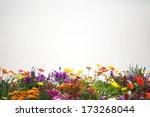 flower garden. | Shutterstock . vector #173268044