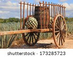 old mexican trailer in front of ... | Shutterstock . vector #173285723