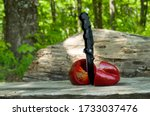 big tasty red pepper cut into two pieces with a black camping knife on a wooden stump in the nature - stock photo