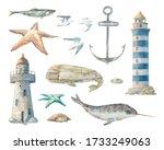 Nautical Set  Narwhal  Sea...