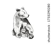 sketched bear animal sitting... | Shutterstock .eps vector #1733290280