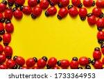 Toy Wooden Ladybugs On Yellow...