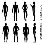 set of full length front  back... | Shutterstock .eps vector #173353673