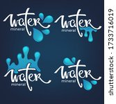 mineral water  lettering... | Shutterstock .eps vector #1733716019