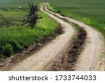 The Long  Winding Road In The...