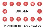 spider icon set. collection of...   Shutterstock .eps vector #1733781803