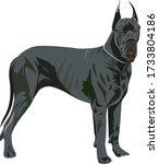 giant dog vector. great dane... | Shutterstock .eps vector #1733804186