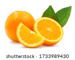 whole  cross section and... | Shutterstock . vector #1733989430