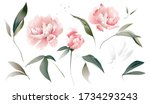 set flowers peonies  leaves.... | Shutterstock .eps vector #1734293243