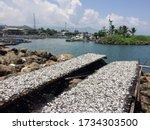 Pelabuhan Ratu  West Java  ...