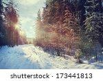 Winter Forest Sunset Sunbeams