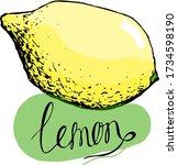 Vector Illustration. Lemon....