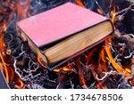 Destruction Of Books. Book Wit...