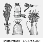 hand drawn sketch set of... | Shutterstock .eps vector #1734755600