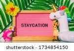 Staycation Sign For Summer...