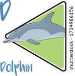 d for dolphin  a sea mammal... | Shutterstock .eps vector #1734986156