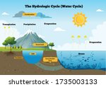 the hydrological cycle process...