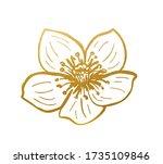 drawn golden wild rose   golden ... | Shutterstock .eps vector #1735109846