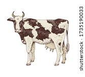hand drawn cow. farm animal.... | Shutterstock .eps vector #1735190033