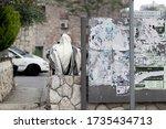 Jerusalem  Israel. 29 04 2020....