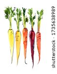 colored carrots painted in... | Shutterstock . vector #1735638989