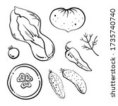 pak choi  cucumbers  tomatoes ... | Shutterstock .eps vector #1735740740