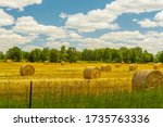 Countryside View Of Newly Baled ...