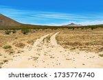 Dirt Road In An Open Land In...