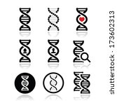 dna  genetics vector icons set | Shutterstock .eps vector #173602313