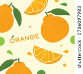 jeju island orange hallabong on ... | Shutterstock .eps vector #1736097983