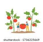 Organic Production Cartoon...
