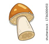 vector mushroom collection....