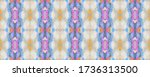ethnic seamless pattern. fun... | Shutterstock . vector #1736313500