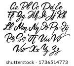 vector handwritten calligraphic ... | Shutterstock .eps vector #1736514773
