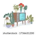 Vintage Tv  Retro Entertainment....