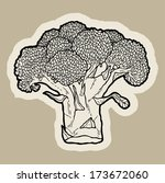 broccoli cartoon vector.